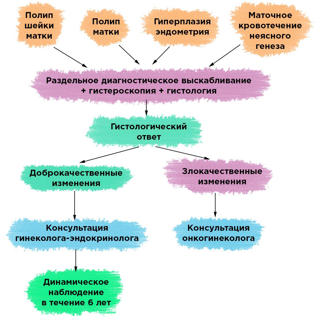 Что такое Раздельное диагностическое выскабливание